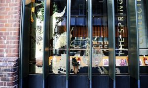 gold window stickers Sydney