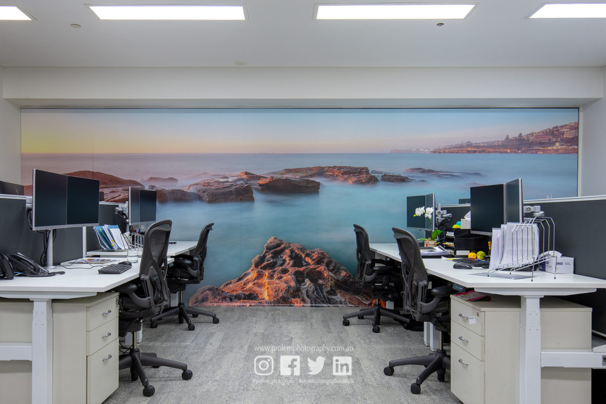 Through an aesthetic lens: Transforming a Sydney office with a stunning glass wall mural