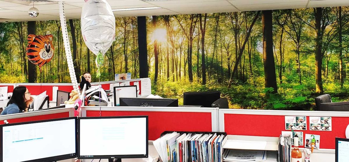 Bringing nature to your work space: the transformative power of Wall Murals